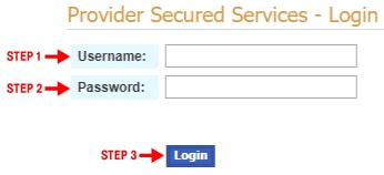 webdenis provider secured login
