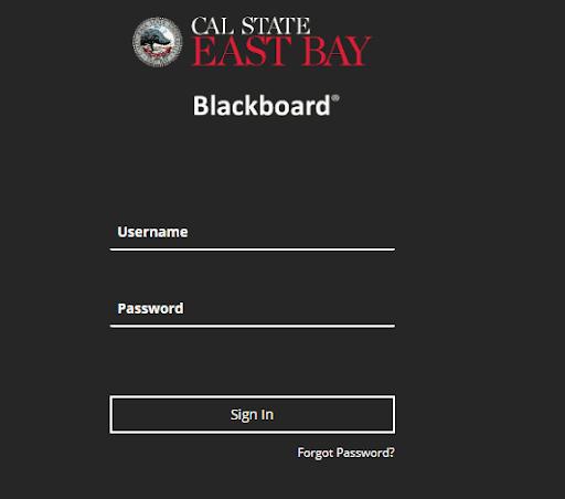 Blackboard Csueb